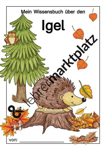 Igel Wissensbuch Unterrichtsmaterial In Den Fachern Naturwissenschaften Sachunterricht Igel Herbst Im Kindergarten Vorschulideen