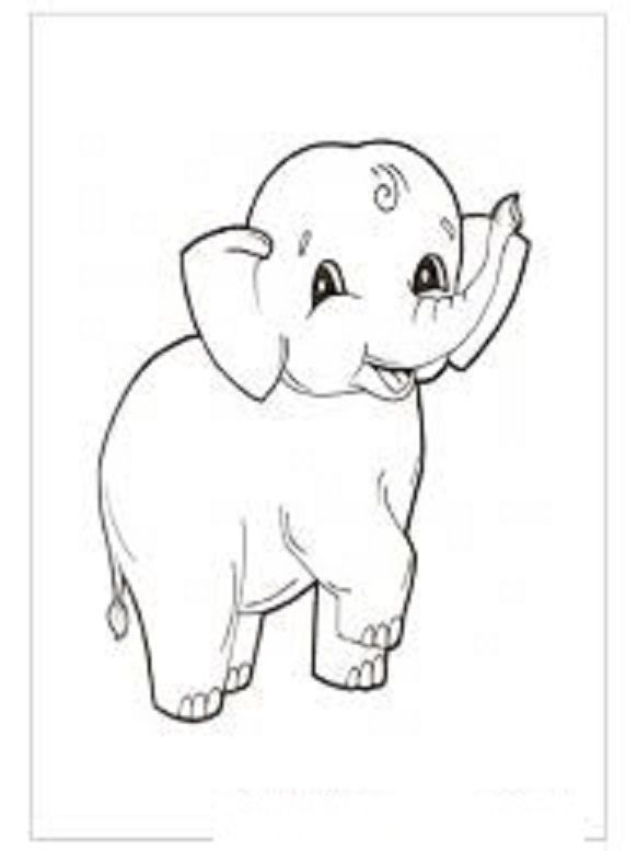 elephant coloring pages for kids  preschool and