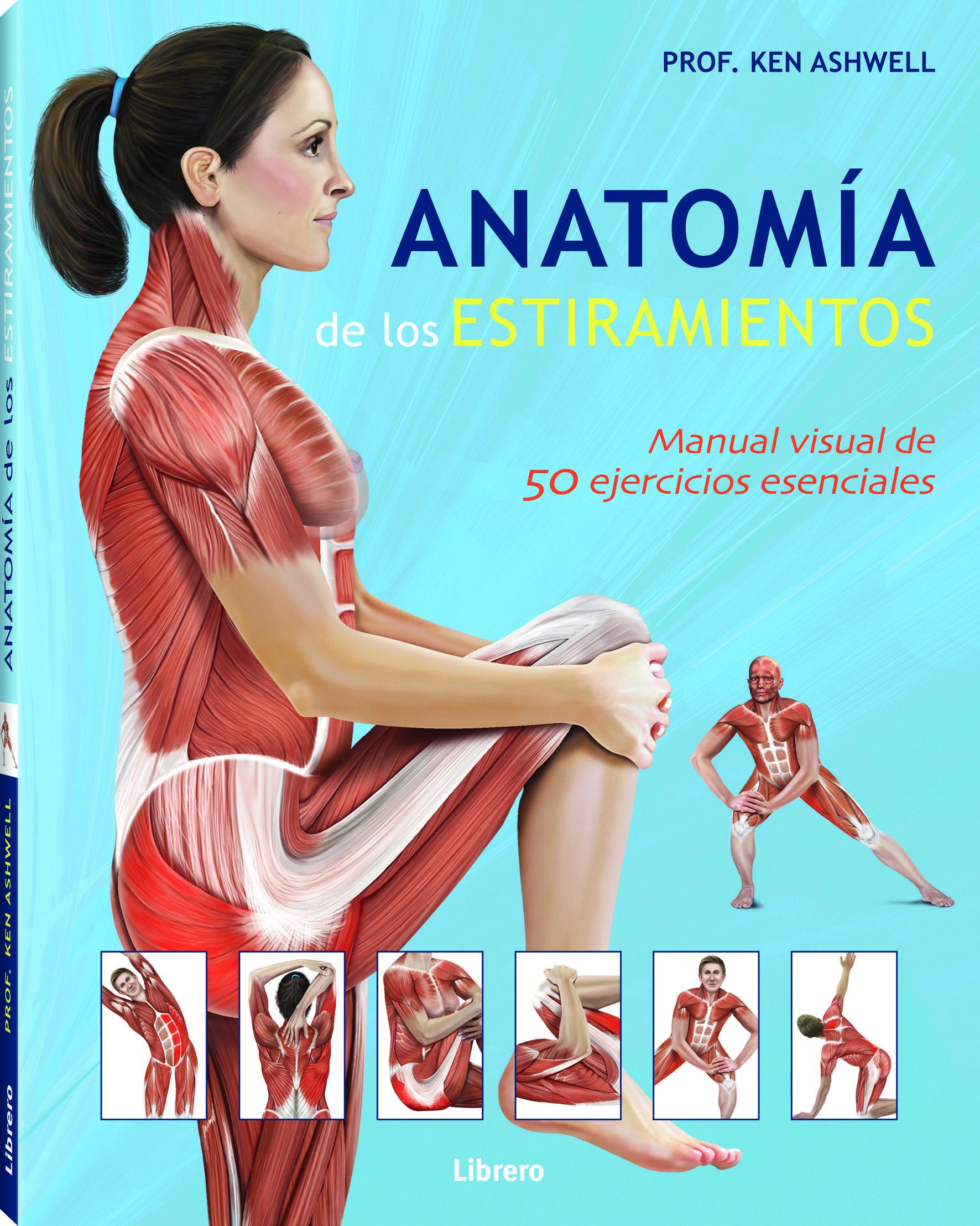 Anatomía de los estiramientos: manual visual de 50 ejercicios ...