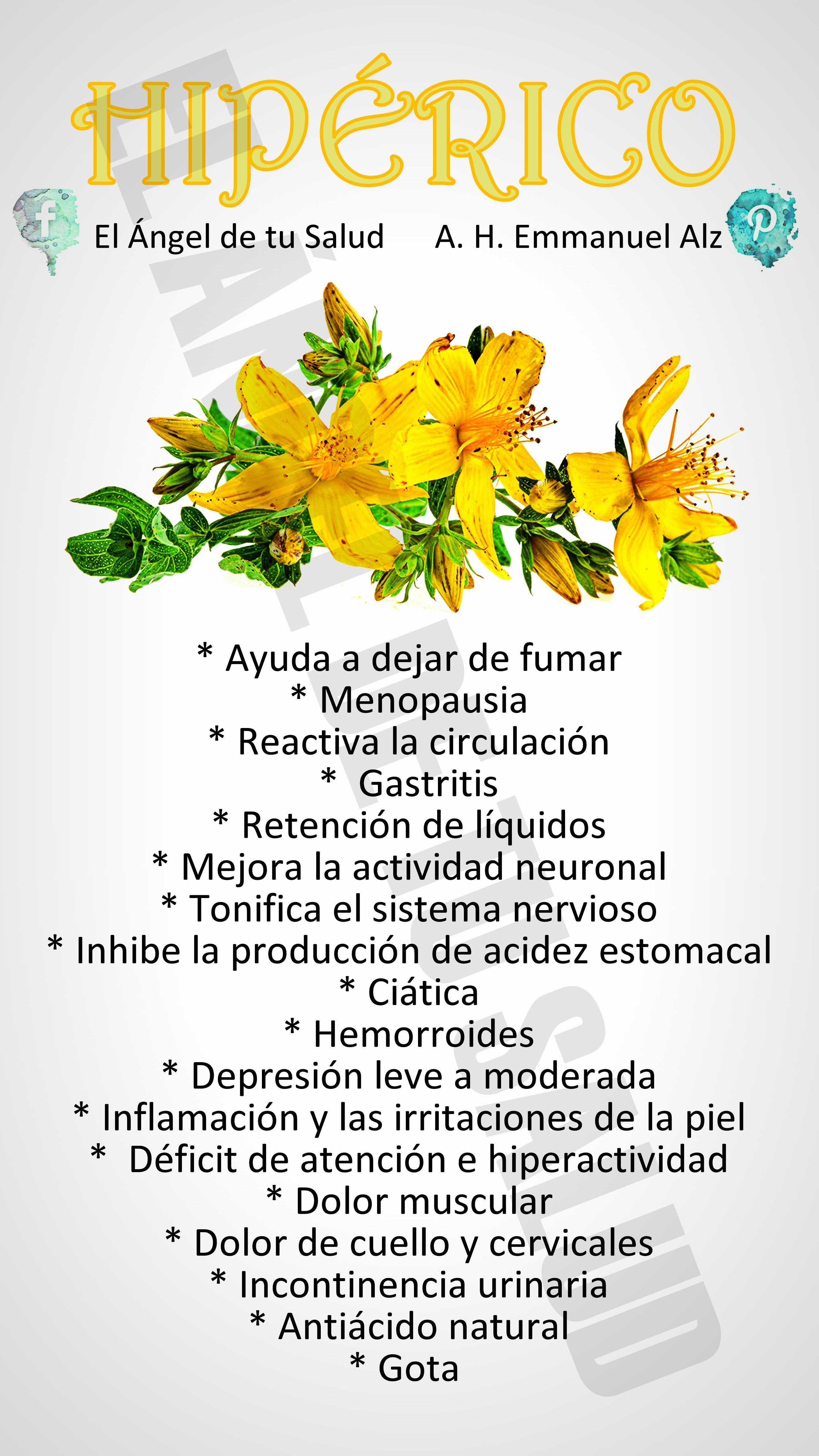 hierbas para enflaquecer en la menopausia