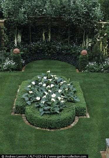 formal garden with white flowers