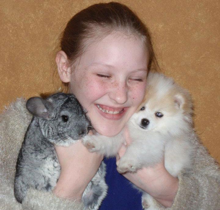 Are Chinchillas Good Small Pets For Kids Best Small Pets Animals For Kids Small Pets For Kids