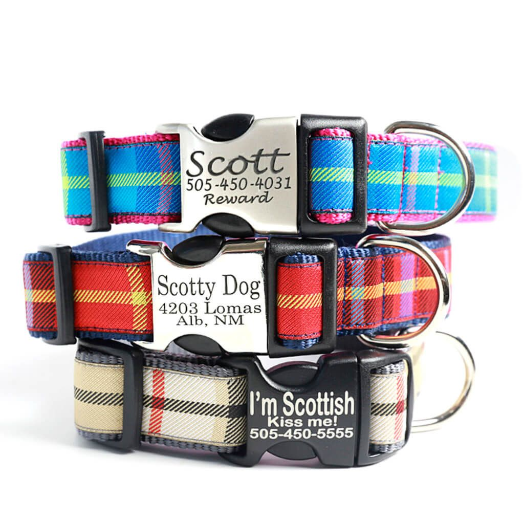 Scottyu plaid dog collar colors laser engraved buckle new