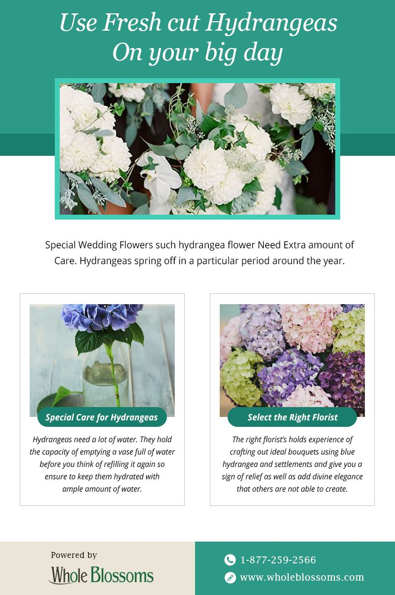 Hydrangea Is The Most Beautiful Flower And Perfect For Any Occasion You Can Decorate Your Venue With Hydrangea Flower Flowers For Sale Most Beautiful Flowers