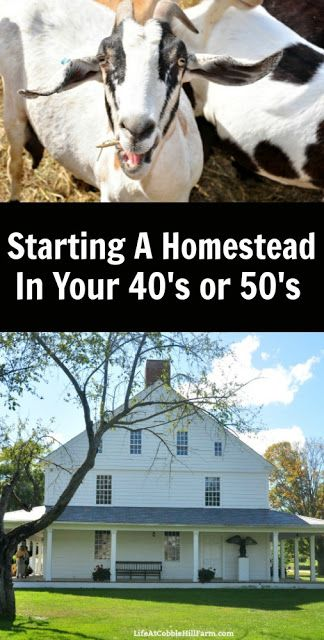 A Beginner's Guide To Homesteading In Your 40's or 50's is part of Homesteading, Homestead farm, Homestead survival, Farm life, Backyard farming, Farm plans - grow most of what we eat and make most things from scratch  Our future plans in a nutshell are that we would like to be mortgage free and move one last time to a (paid for) little bit larger piece of property  We could expand our garden a bit and add a few more animals  I would love to hear from you! What tips, dreams, or fears do you have for starting a homestead life in your 40's and 50's