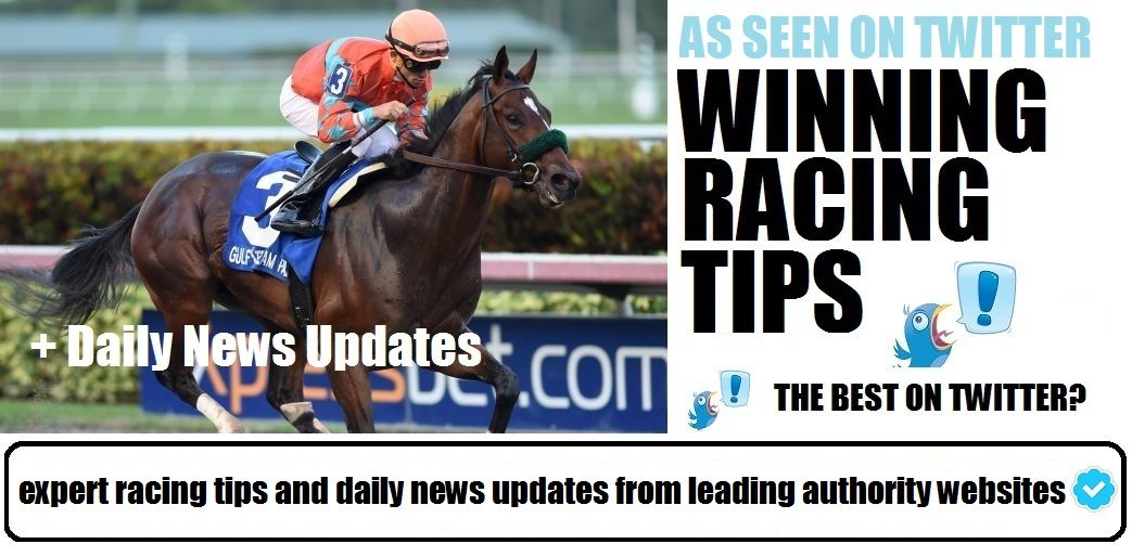 Pin by Gambling Man on Horse Racing Horse racing, Author
