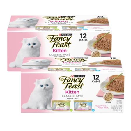 Pets Kitten Food Fancy Kittens