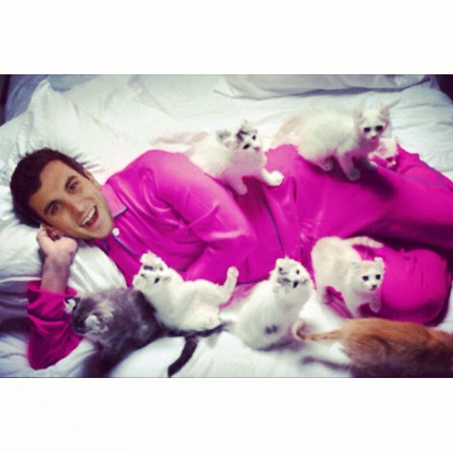 Tanner Tolbert Just a man & his kitties  #catwhisperer #themorethebetter #crazycatlady