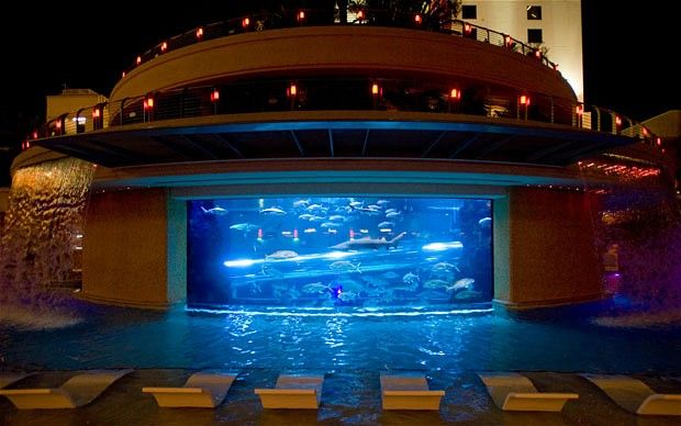 The World 39 S Best Hotel Pools Golden Nugget Las Vegas Only In Las Vegas Would You Find A