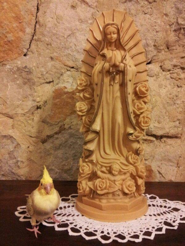 Dando gracias a la Virgen de Guadalupe por haberle salvado la vida.