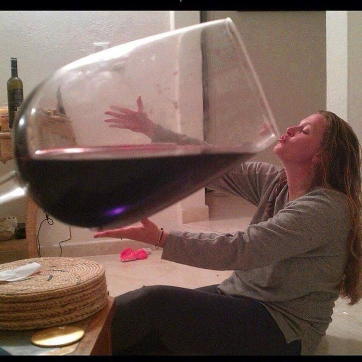 Woman drinks huge glass of wine | Funny pictures, Haha ...