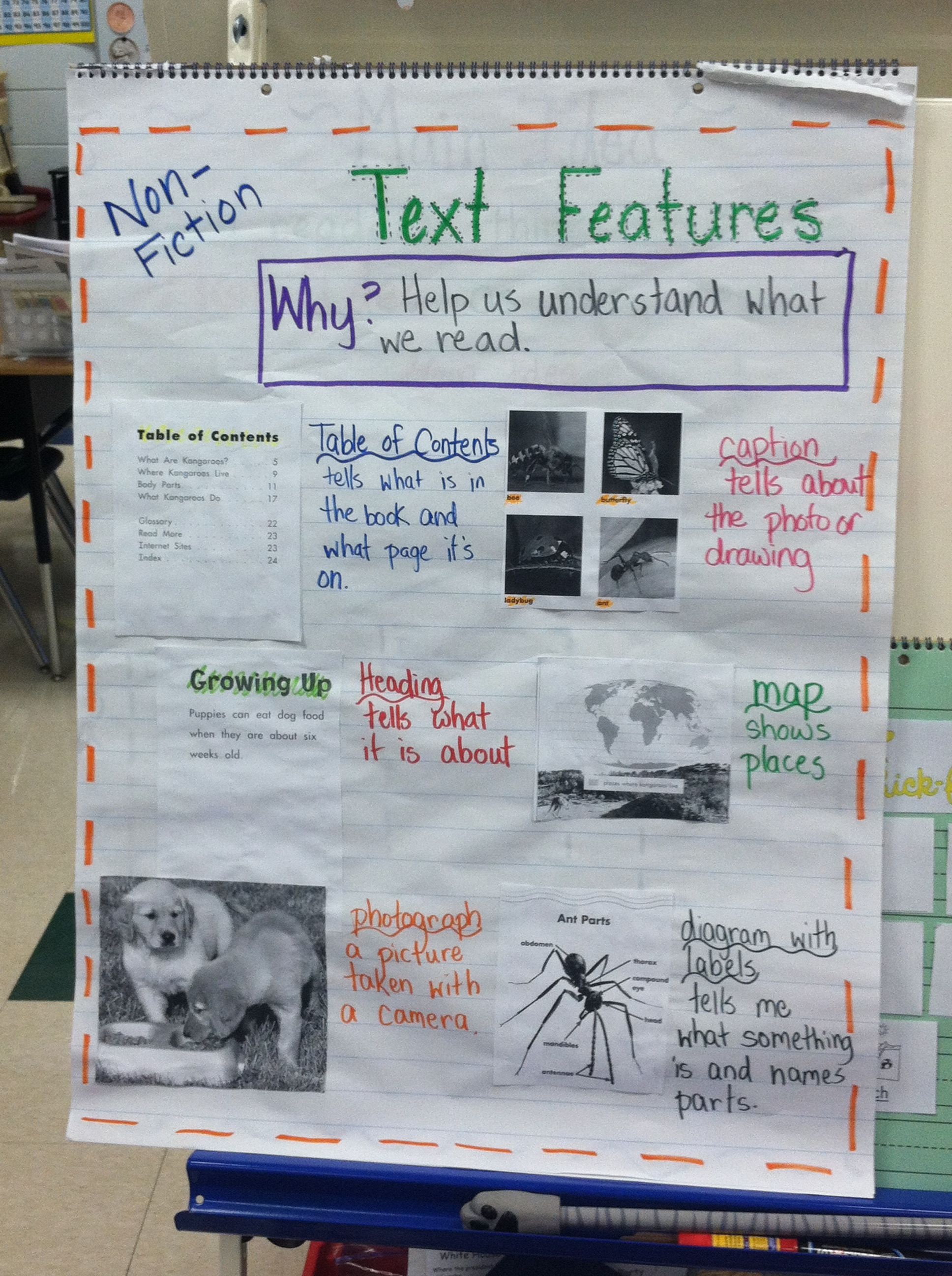 Nonfiction Text Feature Scavenger Hunt Used To Create