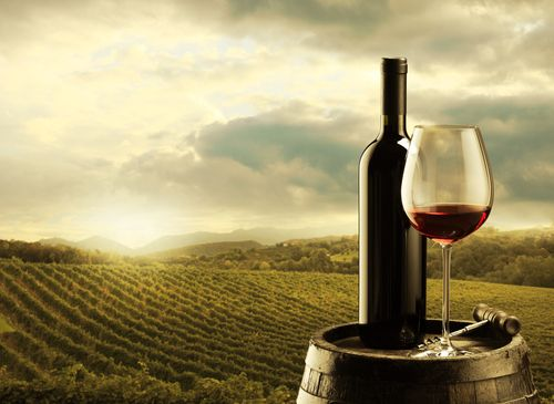 I nostri cinque | Wijn uit Italië