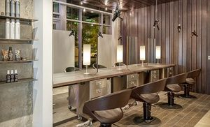 Haircut with Botanical Hair, Scalp Therapy and Optional Color or Highlights at Gary Manuel Aveda Salon (Up to 65% Off)