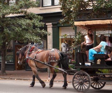 Savannah GA Hotels   Savannah Visitor Information = List of Walking Tours