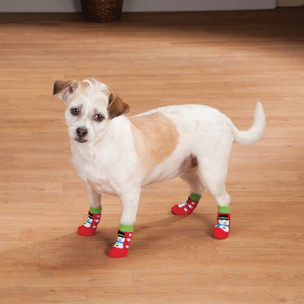 Christmas Dog Socks Set Of 2 Puppy Socks Dog Socks Miles Kimball Dog Socks Christmas Dog Dogs
