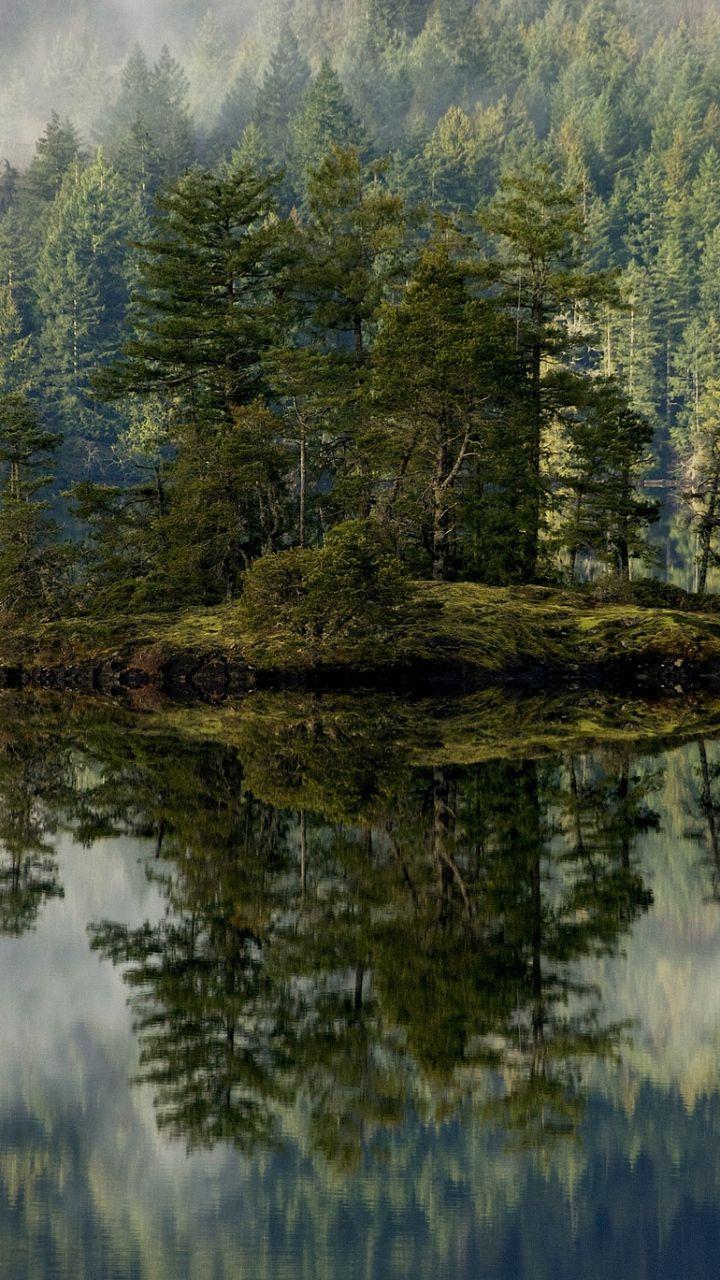 Download Wallpaper 720x1280 Forest Lake Reflection Island Mist Samsung Forest Lake Lake Photos Sky Landscape