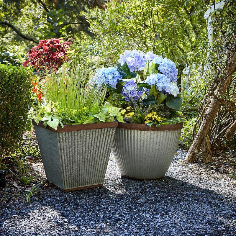 Westbury Resin Pot Planter Succulent Landscaping Succulent Landscape Design Small Gardens