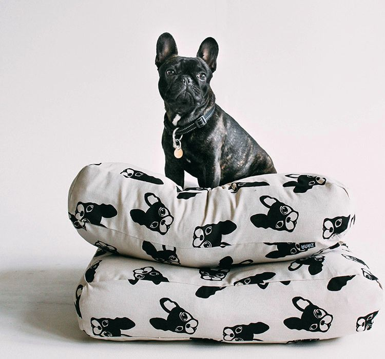 Modern Dog Beds From Zana Dog Bed Modern Cool Dog Beds Dog Bed