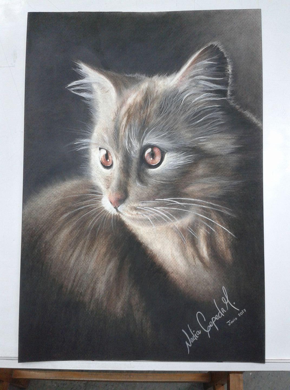 ilustración-minino (sepia,sanguínea,carboncillo,colores,pintura al frio) por nadia