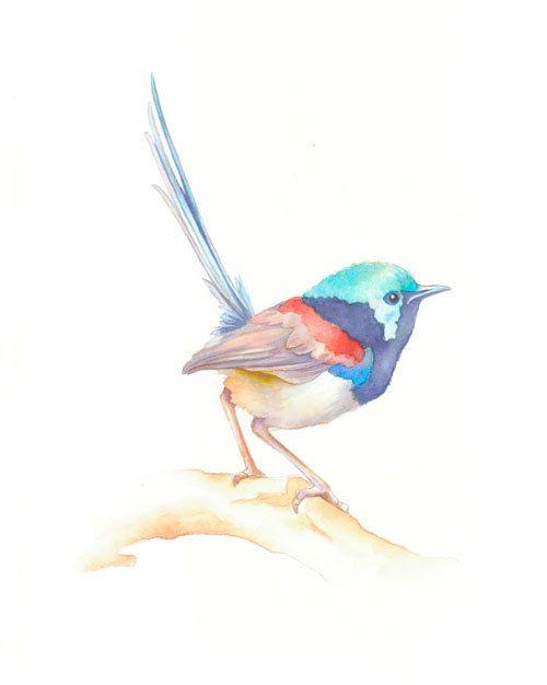 Bird Bird Painting Minimalist Watercolor Original By Chifungw