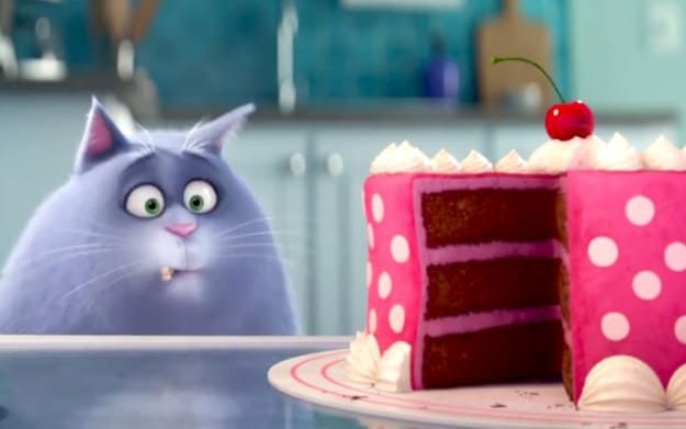 Which Secret Life Of Pets Character Are You You Got Chloe Like Chloe You Re An Independent Cat Who Don T Nee Secret Life Of Pets Pets Movie Secret Life