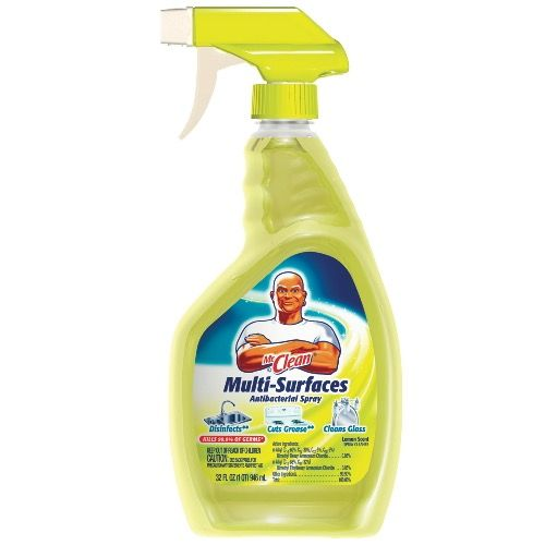 graphic about Mr Clean Coupons Printable identify Additional Prints! $0.75 Off Just one Mr. Refreshing All-Motive Cleaner