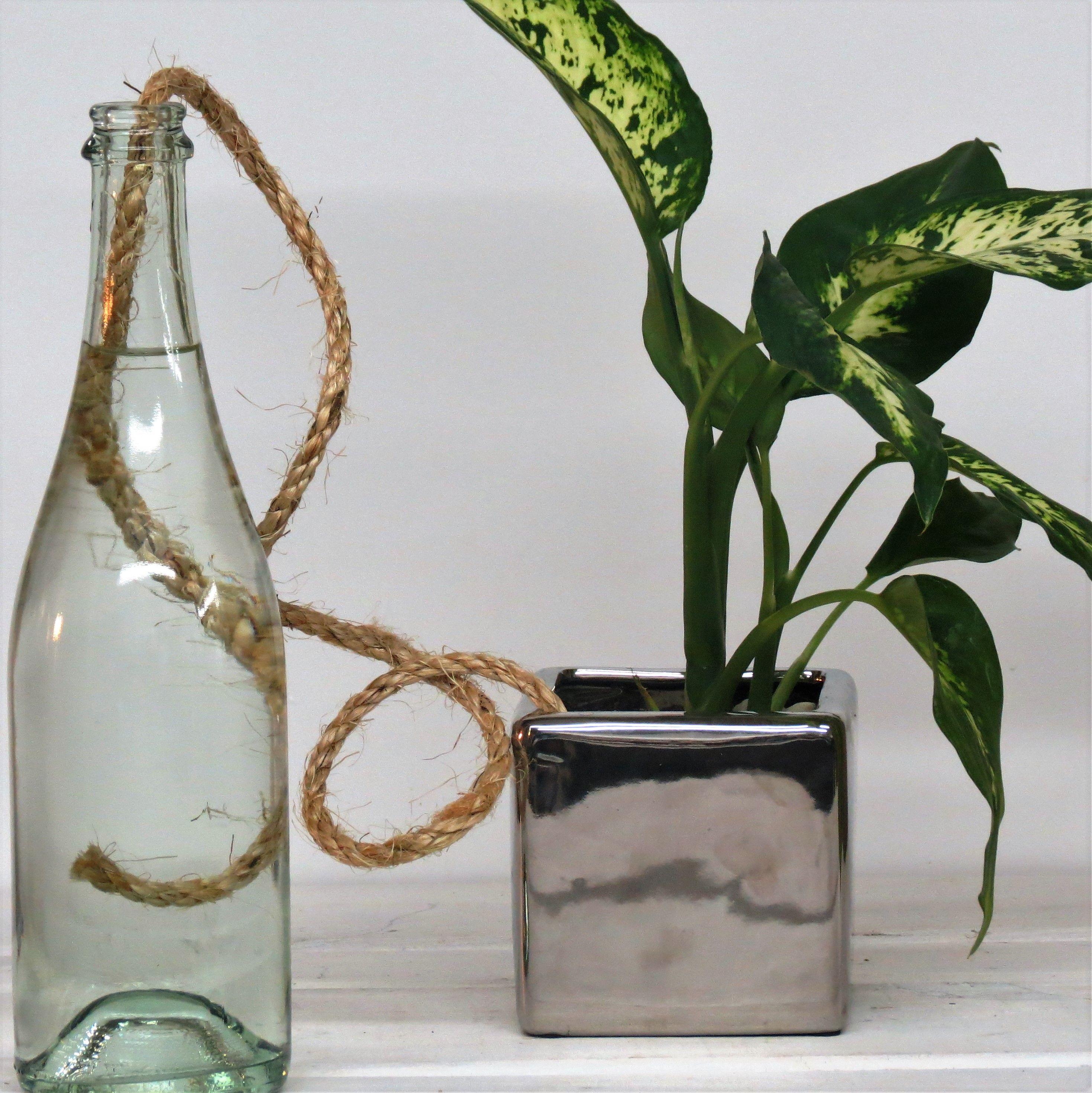 arrosage diy, pour garder ses plantes bien arrosées pendant les