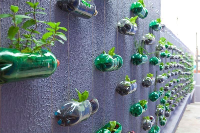 Ini Dia 23 Ide Keren Dan Kreatif Untuk Sampah Botol Plastik Kamu