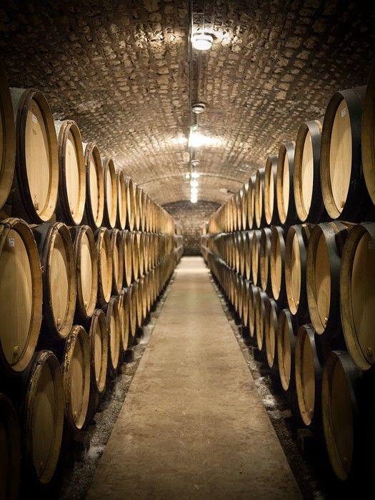 Barrels in wine cellar Wall Mural - Vinyl - Styles & Barrels in wine cellar Wall Mural - Vinyl - Styles | Wall murals ...