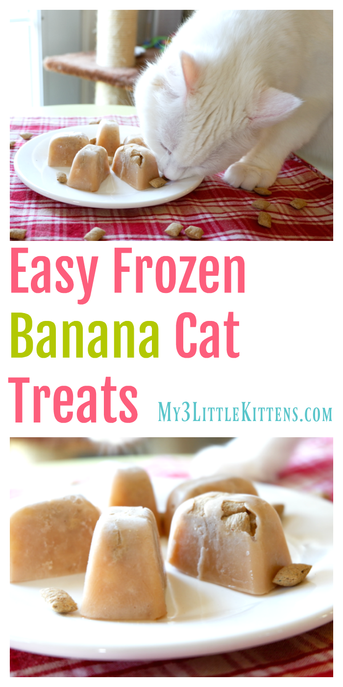 Easy Frozen Banana Cat Treats My 3 Little Kittens Cat Treats Homemade Homemade Cat Food Homemade Cat Treats Recipes