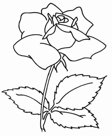 Ausmalbilder Fur Kinder Rosen 8 Blumen Ausmalbilder Ausmalbilder Zum Ausdrucken Ausmalbilder