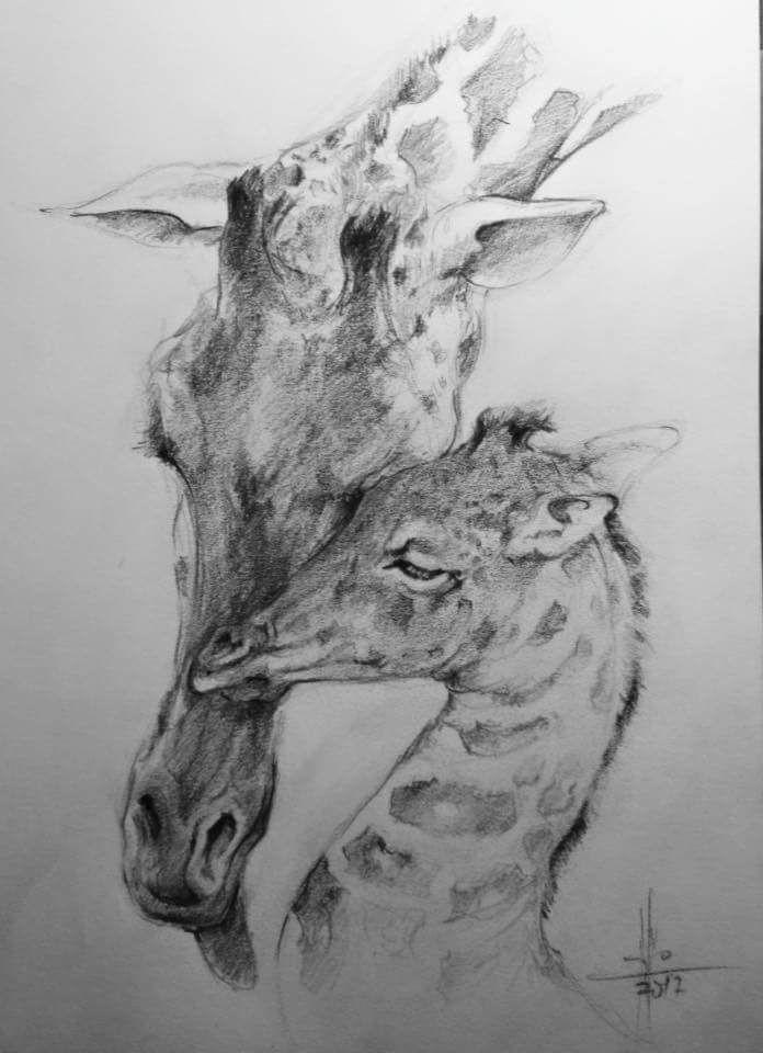 Dibujo A Lapiz Carbon Graso Por Francisco Javier Abellan Dibujos Y