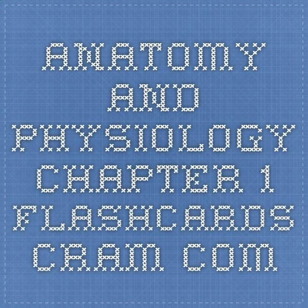 Anatomy and Physiology Chapter 1 Flashcards - Cram.comhttp://www ...