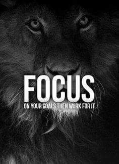 The universe gives you what you focus on. Please share with us what you are focussing on right now. www.thesecret.tv