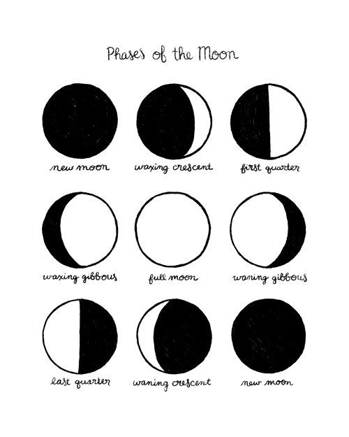 Ridiculous image with regard to printable moon phases