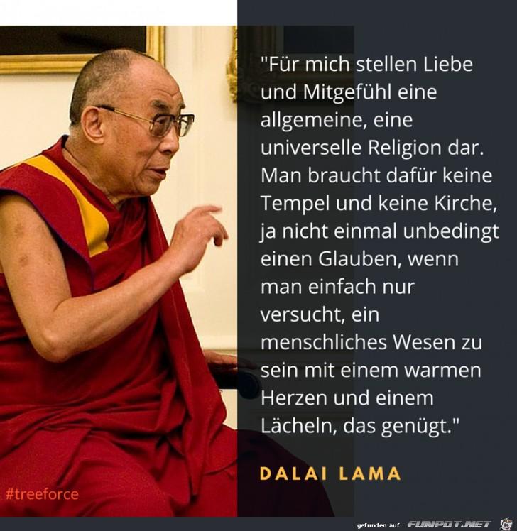 Liebe Und Mitgef Hl Sprüche Weisheiten Sprüche Und