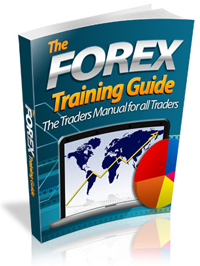 Can you get rich justnwith forex