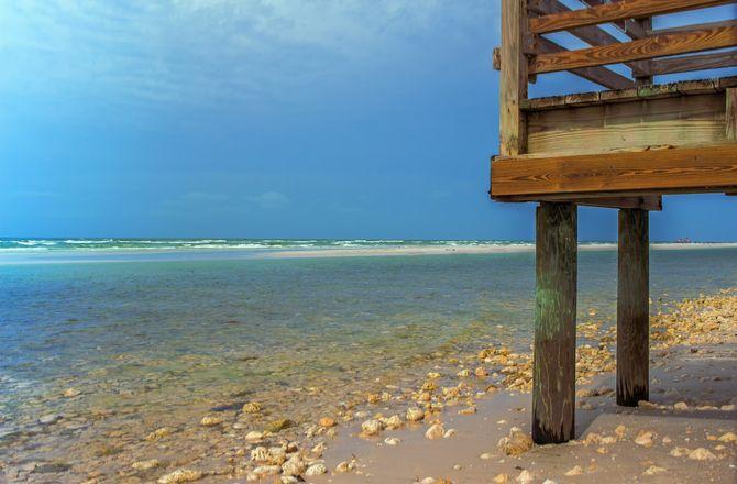 Picnic Island Beach Dog Park Tampa