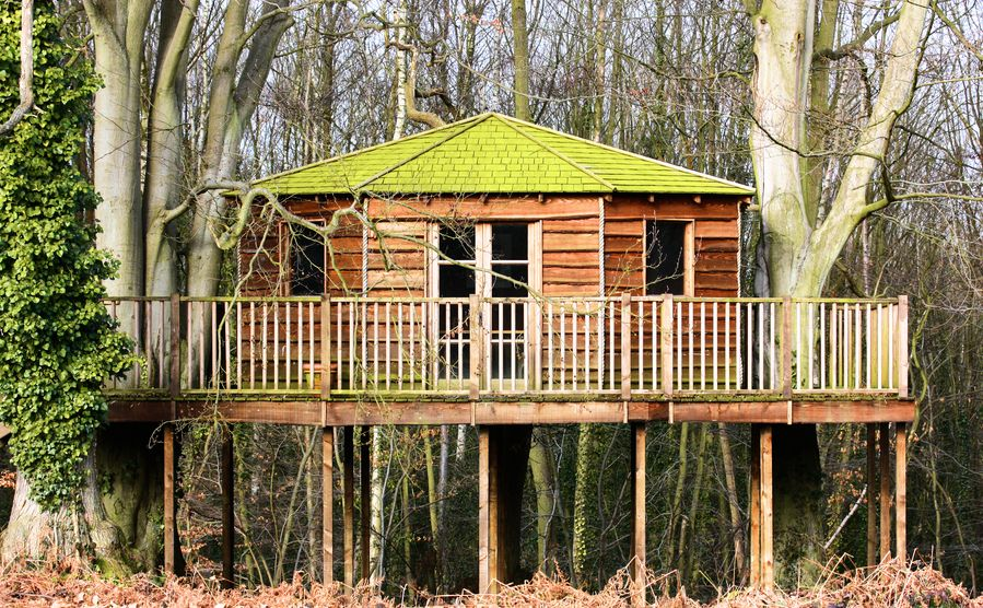 Awesome Tree House Plans On Stilts | Adult Tree House Built In The Tree Canopy With  Large