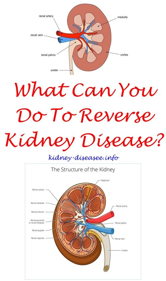 the best kidney cleanse - cleaning your liver and kidneys.kidney ...