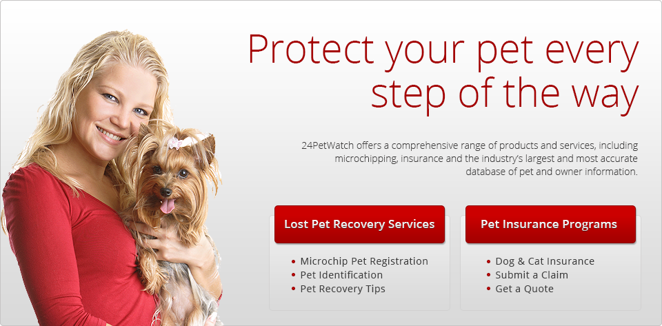 Pet Insurance 24petwatch Pet Health Insurance For Cats Dogs