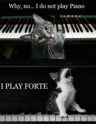 Piano Forte Music Humor Music Nerd Music Puns