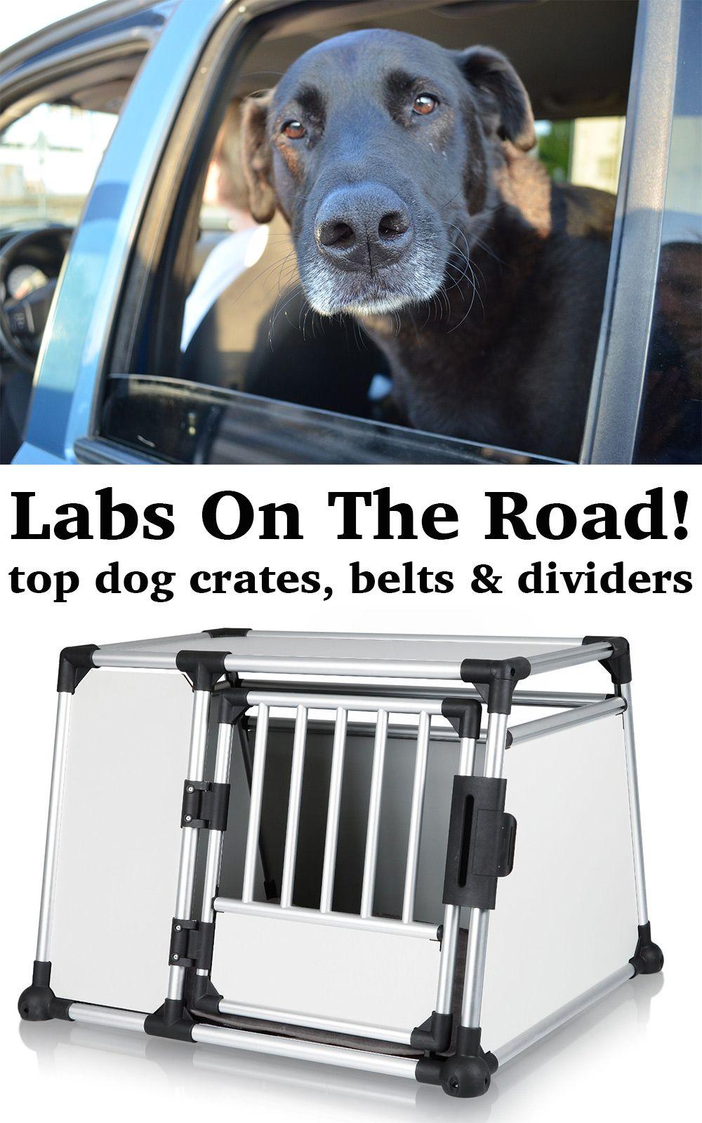 Labrador Travel Car Crates, Dog Dividers & Seat Belts