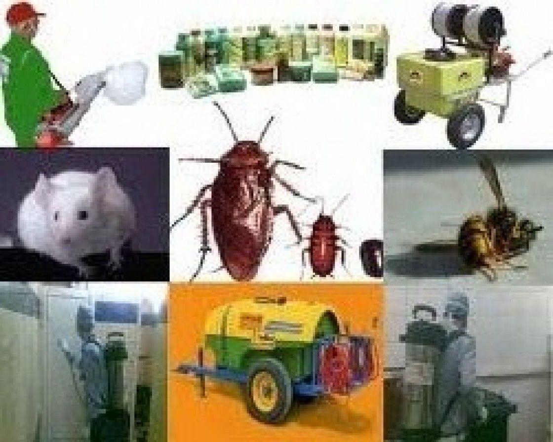 شركة رش مبيدات حشرية بالرياض 0562823307 الساطع Baby Mobile Blog Youtube