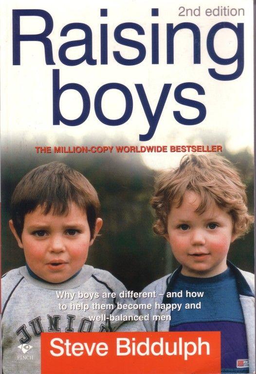 RAISING BOYS - STEVE BIDDULPH (MANHOOD, SECRET OF HAPPY CHILDREN MAKING LOVE) sc  | eBay
