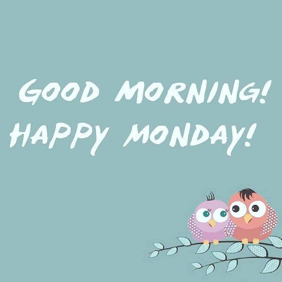 Good Morning Quotes Unique : Good morning happy monday cute quote