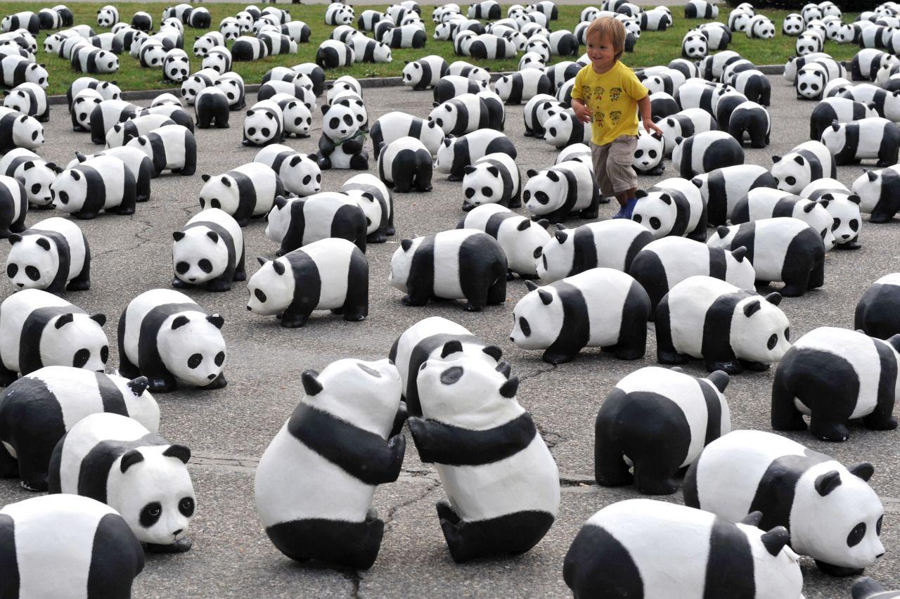 WWF + public art = PANDAS