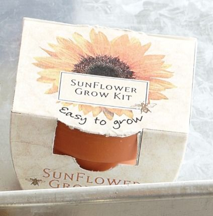 I love sunflowers! I want to grow them inside to add light to my home.  Sunflower Grow Kit  by Zions Mercantile  #DesBookMomGiveaway