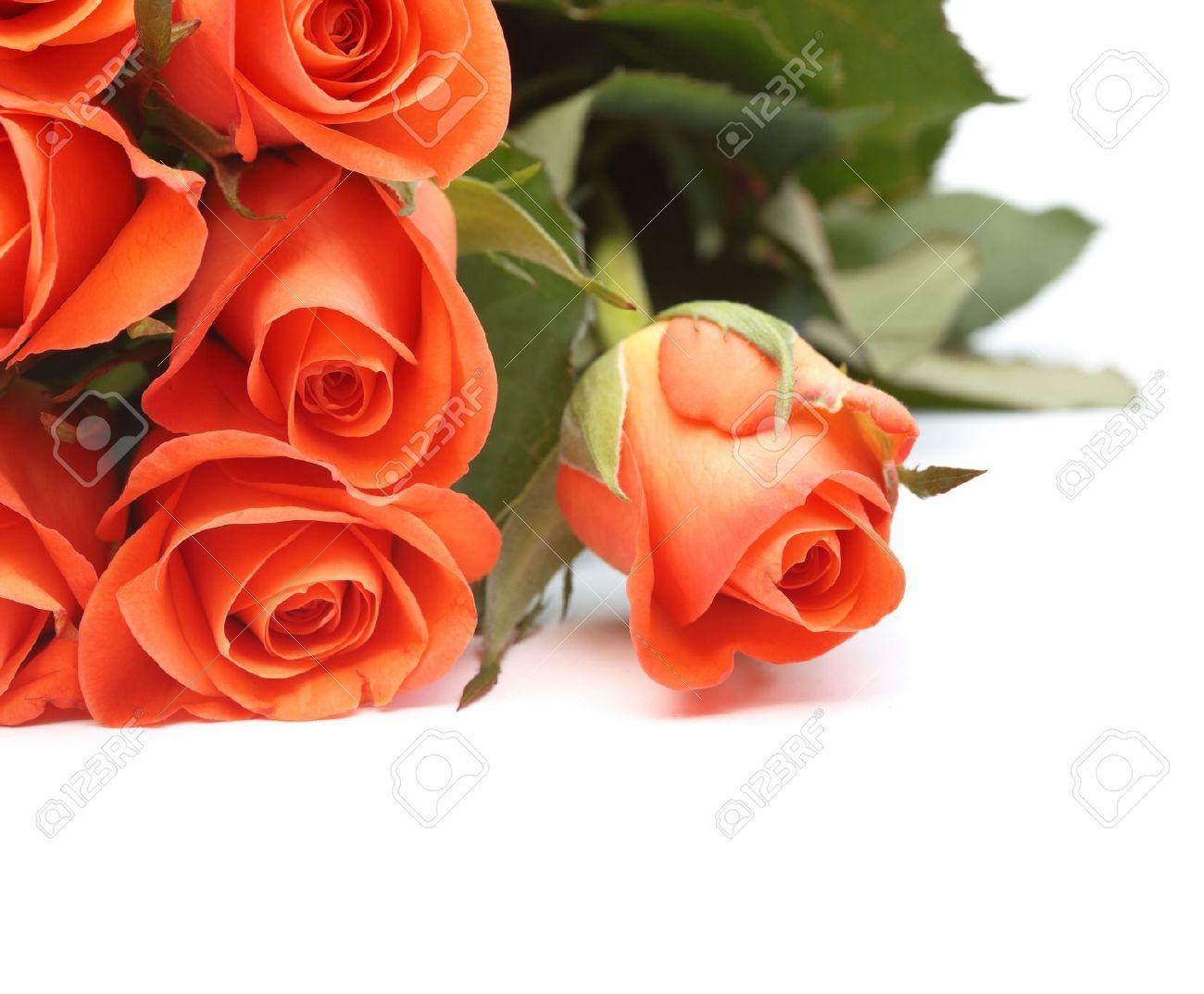 Wedding background latest  bouquet de rosas rosas  Buscar con Google  Flowers and Roses